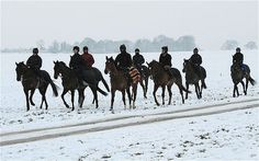 Horses & riders brave the winter chill on the gallops.