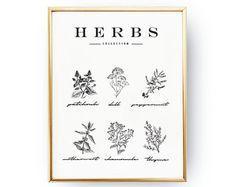 Herbs Poster, Kitchen Wall Art, Kitchen Print, Kitchen Decor, Botanical Print, Food Poster, Kitchen Illustration, Home Decor, Garden Decor.