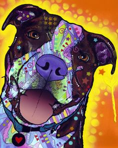Daisy Pit by Dean Russo  Love love love love this. I can never find pictures of dogs that look like mine!!!