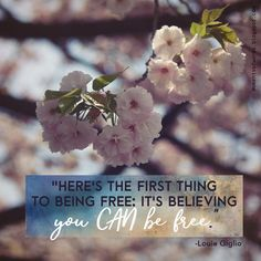 God wants you to live in the fullness and freedom! #godsetsfree #freedom #free #youarefree #wisewords #encouragement