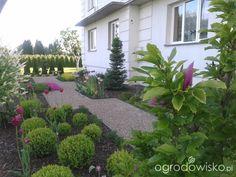 Metamorfozy ogrodowe - strona 138 - Forum ogrodnicze - Ogrodowisko