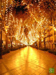 Decoración navideña de la Carrera de la Virgen en Granada