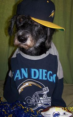 Don't even mess with my Chargers. #ChargersPetDay