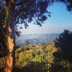 Topanga Canyon  @mary johanna seibert