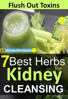 7 Best Herbs for Kidney Cleansing: Flush Out Toxins From Your Kidneys cleanse cleansedetoxflush kidneys health 377950593725937918 Liver And Kidney Cleanse, Liver Detox, Cleanse Detox, Food For Kidney Health, Kidney Foods, Health Foods, Kidney Friendly Diet, Healthy Kidneys, Healthy Juices