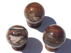 Petrified Wood Spheres (60mm)