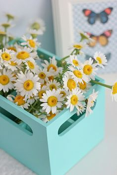 Find images and videos about flowers and daisy on We Heart It - the app to get lost in what you love. Happy Flowers, Flowers Nature, Summer Flowers, Beautiful Flowers, Daisy Love, Daisy Girl, My Flower, Flower Power, Frühling Wallpaper