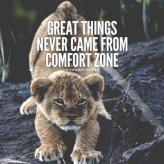Great Things Never Came From Comfort Zone life quotes quotes quote life quote instagram instagram quotes life quotes and sayings positive inspirational quotes quotes for instagram positive quotes on life