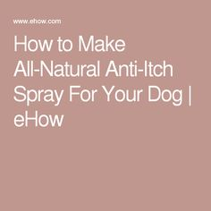 To make an all-natural anti-itch spray for your dog, use skin-soothing ingredients such as apple cider vinegar, chamomile, aloe, oatmeal and lavender hydrosols. Puppies Tips, Baby Puppies, Anti Itch For Dogs, Cool Pets, Cute Dogs, Meds For Dogs, Itchy Dog, Dog Health Tips, Pet Treats