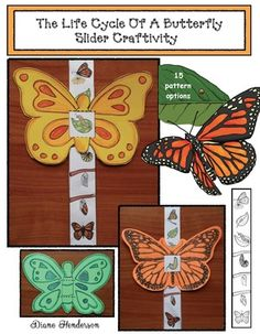 life cycle of a butterfly activities, life cycle of a butterfly crafts, the very…