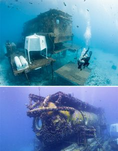 Aquarius Reef Base, Florida Keys