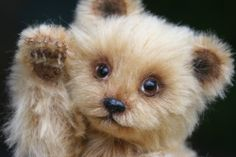 Mink Fur Teddy Bears Kimbearlys Originals