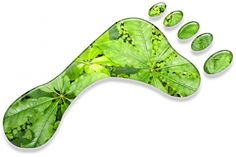 carbon footprint | Performing even a basic carbon footprint analysis can help businesses ...
