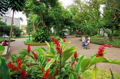 Parque España, San Jose, Costa Rica. Spent a wonderful afternoon here with Ally and Kerriann!
