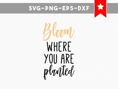 bloom where you are planted svg, motivational quotes svg, wood signs sayings, cricut cut files, cricut designs silhouette dxf files png by PersonalEpiphany on Etsy