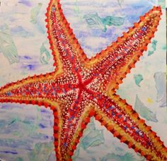 Aja original, general starfish belly 2002: mixed media Starfish, Mixed Media, Projects To Try, Fine Art, The Originals, Canvas, Animals, Tela, Animales