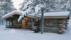 Staying at the Northern Lights Hotel in Finland Winter Cabin, Cozy Cabin, Cozy Winter, Winter Trees, Cozy Cottage, Northern Lights Hotel, Cabin In The Woods, Log Cabin Homes, Log Cabins