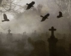 Image result for graveyard colash