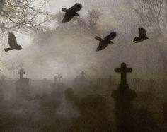 Image result for graveyard colash
