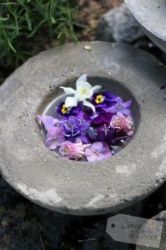 Die Farbe Lila - Betonschale mit Blumen
