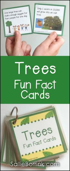 Trees Fun Facts Cards Discover new and fascinating facts about trees every day with your students! These cards are used a dozen different ways by teachers and parents - bulletin boards, games and more! Creative Curriculum Preschool, Preschool Science, Science Activities, Facts For Kids, Fun Facts, Random Facts, Parent Bulletin Boards, Trees For Kids, Tree Day