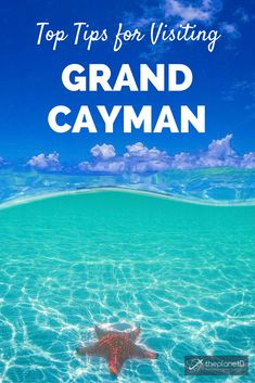 15 of the Best Things to Do in Grand Cayman - Top Tips for Your Trip to Paradise! | Blog by The Planet D: Canada's Adventure Travel Couple