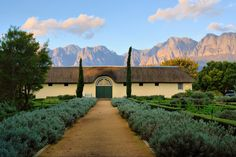 The Cape Winelands .