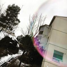 Elämää kuplan sisällä  #home #myhome #koti #saippuakuplia #espoo #kotipiha