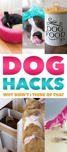 Dog hacks to make life with your furry friends just a tad easier. #pets #dogs