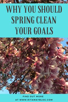 Why you should spring clean your goals? Sometimes there are goals that are no longer taking us in the right direction. They had an importan. Goals Planner, Life Planner, Long Take, Goal Planning, Achieving Goals, Motivation Goals, Self Development, Personal Development, Personal Goals