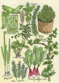 Dawn Tan's green gem illustration