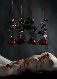 Blood dripping roses