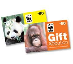 World Wildlife Fund gift Adoption Cards: Awesome, awesome gift idea for kids