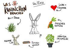 Was Kaninchen brauchen. By umsturzvegan.de