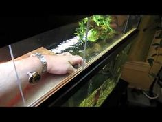 ▶ Above Tank Basking Area - Details - YouTube Super cool, Looks professional and custom. WILL be doing this for my turtles!!!
