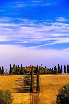 Cerca de Pienza, province of Siena Tuscany ph.cr.via blaineharrington - thru Michael Allen's photo on Google+