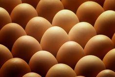 Plant Based Nutrition, Plant Based Diet, Nutrition Tips, Plant Based Recipes, Health And Nutrition, Health Tips, Egg Facts, Food Facts, Forks Over Knives