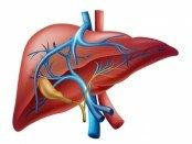 Acute Liver Failure: Causes & Initial Management (Part 1 of 2) http://pulmccm.org/main/2014/review-articles/acute-liver-failure-review-part-1-2/ excellent website for info on critical care and pulmonology - pulmccm.org/main