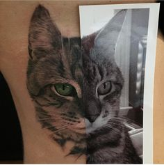 My newest tattoo. Cat portrait. Compliments of Dustin Swink at Memorial Tattoo -Atlanta