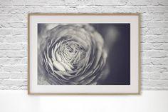Floral Digital Download Photo, Minimalist Photography, Zen Wall Art, Fine Art Photography, Hygge art, Ranunculus Print, Still Life