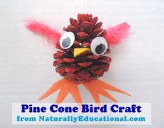 Pine Cone Bird Craft for Christmas ornaments or just for winter fun!