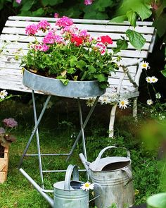 More images like this on my favorite board `Vintage garden`, gr AnMa Zine(Photo by#Aurey')