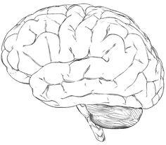 brain coloring page | growth mindset | Pinterest | Brain, Mindset ...