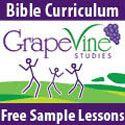 Grapevine Studies: Esther by Dianna Wiebe {Review} - Jennifer A. JanesJennifer A. Janes