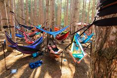 Hammock heaven at the forest!