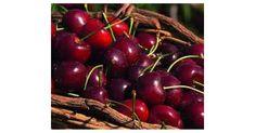 Kirschen entkernen im TM5 / Kirschmarmelade, ein Rezept der Kategorie Grundrezepte. Mehr Thermomix ® Rezepte auf www.rezeptwelt.de