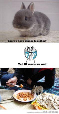Picnic with a rabbit @alexinthecity | Alexandra Heide | Alexandra Heide | Alexandra Heide!