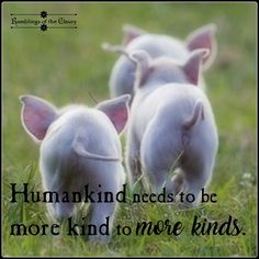 Humans can't even be kind to each other, unfortunately. But one day it will all be different.