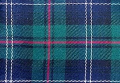 modern urquhart tartan. (I gave Dad and the boys all ties in this pattern - make them wear them for the party)