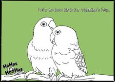 A little Valentines Day love for your love bird.
